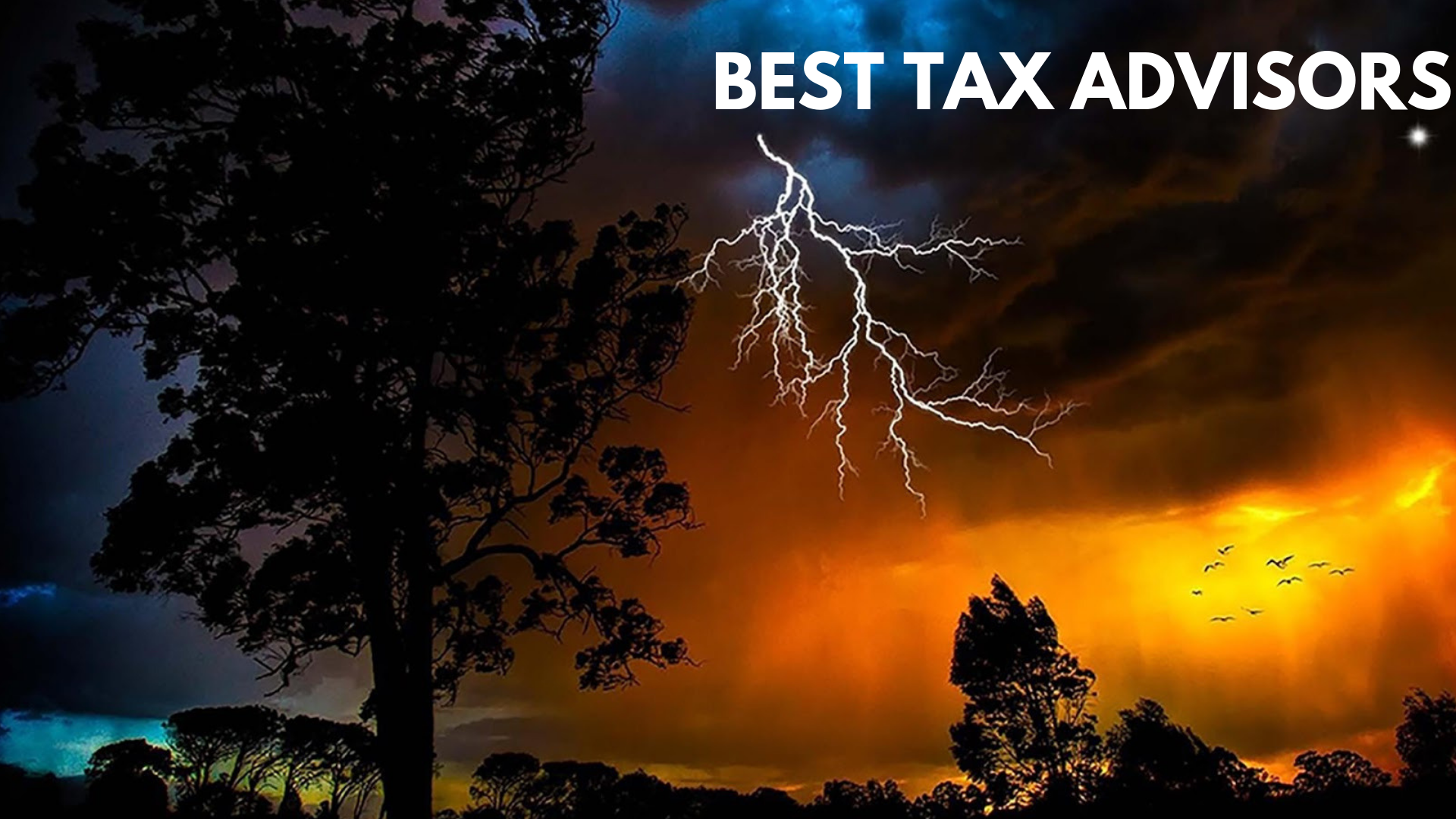 tax advisors , best tax advisors